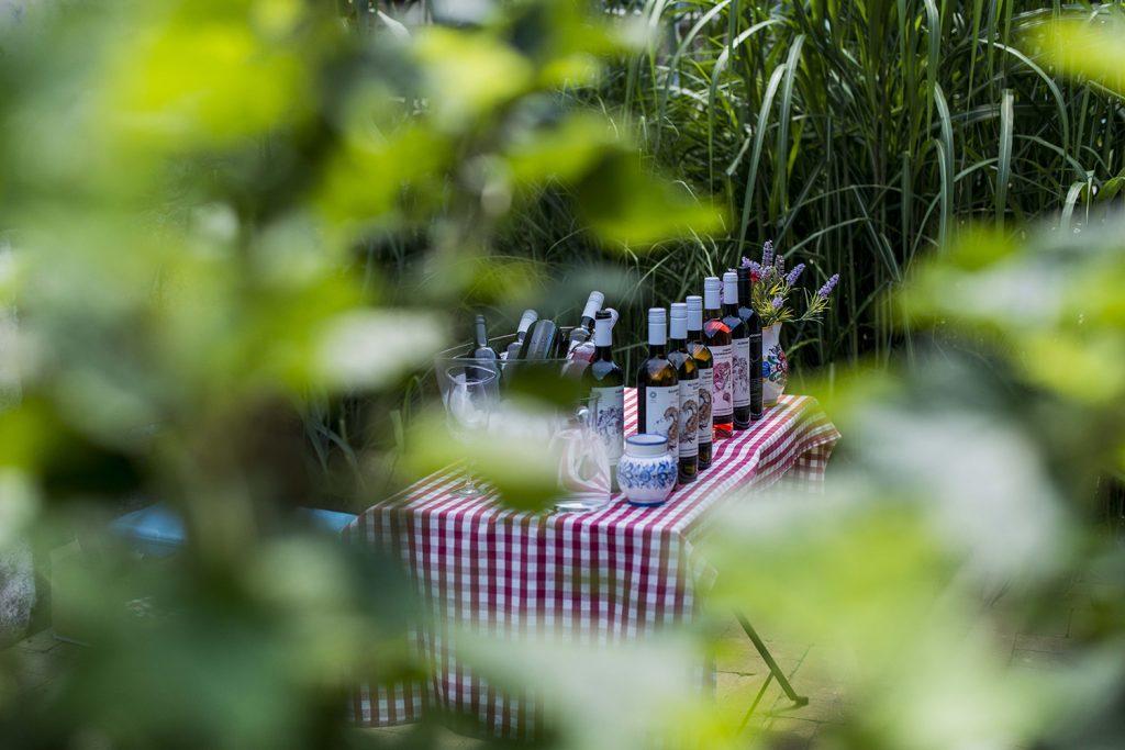 Ponuka vín - Farebné vinárstvo Pezinok